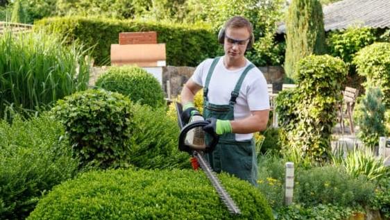 Todo sobre la Factura de jardinería